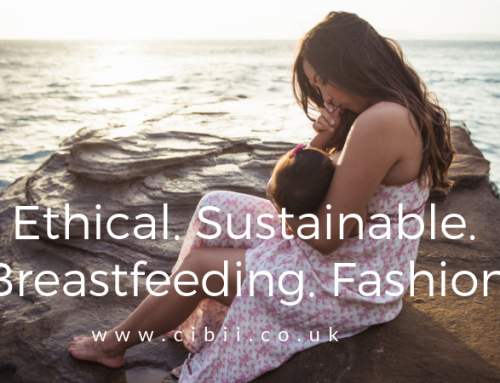 Ethical, Sustainable, Breastfeeding Fashion: The Brands.